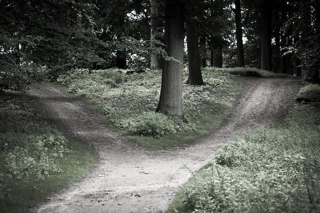 image: Laenulfean (cc: by-sa)